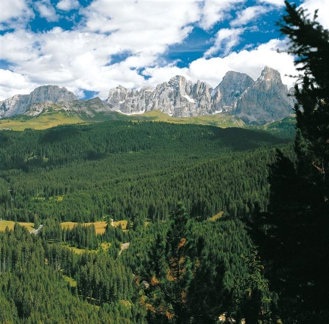Pale di San Martino - Foresta di Paneveggio